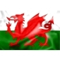 flag---wales(1)